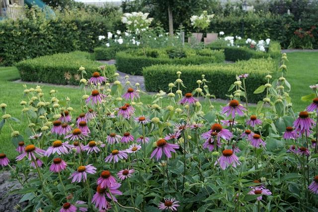 Engelse Landschapsstijl Tuin : Engelse landschapstuinen hoveniersbedrijf jonkers