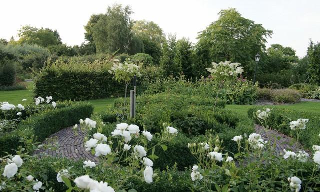 Heuvelachtig Tuin Ontwerp : Ontwerpen van de tuintekenaar tuintuin